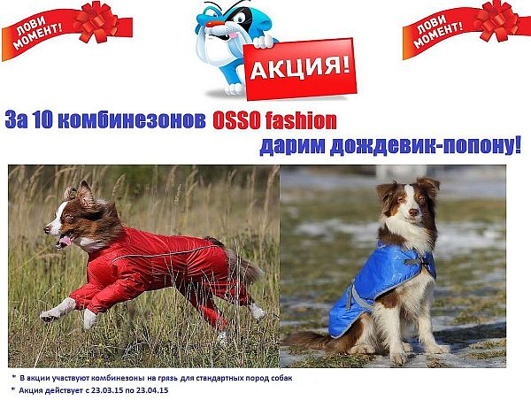 http://www.expagroup.ru/upload/medialibrary/287/28794532eaca918a0c7036190f1b0461.jpg